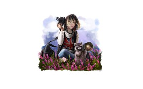 Picture girl, nature, the camera, raccoon