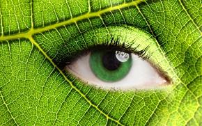 Picture sheet, eyes, eyelashes