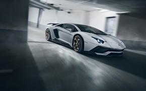 Picture speed, Lamborghini, supercar, 2018, Novitec Torado, Aventador S