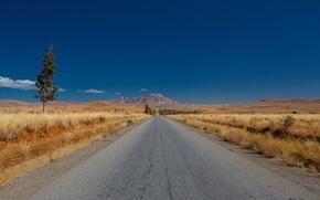 Picture road, landscape, Madagascar