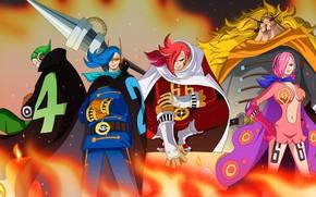 Picture game, One Piece, anime, warriors, king, japanese, by melonciutus, Vinsmoke Reiju, Yonji, Germa 66, Vinsmoke, …