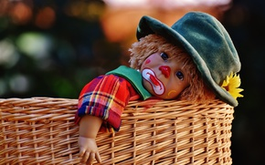 Picture flower, basket, toy, the game, doll, clown, tear