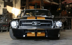 Picture Ford Mustang, 1967, Fastback