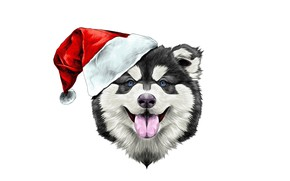 Wallpaper dog, new year, new year, hat, happiness, 2018, santa claus, happy, holiday, hat, dog