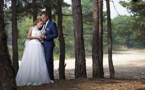 Picture forest, photo, bouquet, dress, the bride, beautiful, wedding, the groom