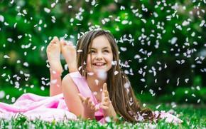 Picture grass, joy, smile, hair, petals, dress, girl
