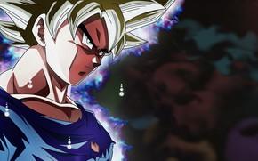 Picture DBS, game, anime, asian, manga, Dragon Ball, Dragon Ball Super, japonese
