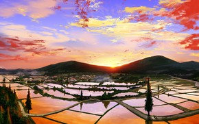 Picture the sky, water, nature, sunrise, rice fields, Gorey