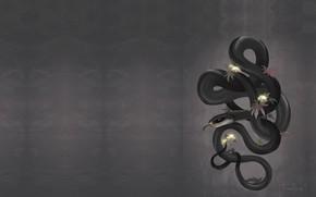 Wallpaper snake, Black Mamba, branch, art, FionaHsieh, Mamba