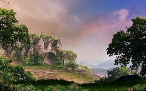 Picture trees, flowers, nature, castle, Castle