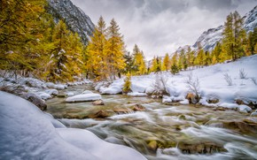 Picture autumn, trees, stream, mountains, snow, river