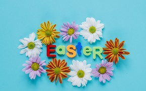 Picture Flowers, Easter, Letters, Holiday, Chrysanthemum