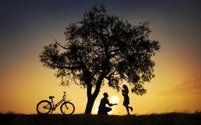 Wallpaper tree, pair, bike, girl, guy, the sun, silhouettes