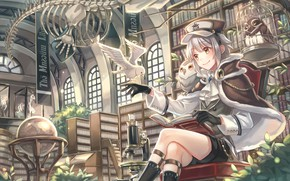 Picture owl, art, skeleton, girl, library