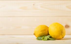 Picture leaves, Lemon, citrus
