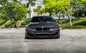 Picture BMW, Front, Face, Sight, F83, Evel