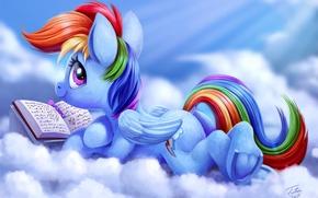 Wallpaper by Tsitra360, MLP:FiM, cartoon, the sky, art, My Little Pony: Friendship is Magic, Rainbow Dash