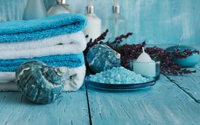 Picture shell, Spa, candle, sea salt
