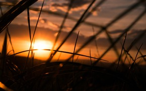 Picture Sky, Grass, Sunset, Summer, Moody, Dusk, Melancholy