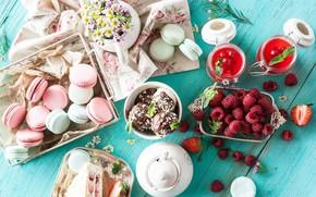 Picture berries, raspberry, chocolate, chamomile, cookies, ice cream, cake, dessert, jam, sweet, macaron