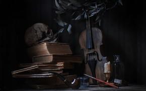 Picture violin, books, skull, tube, still life, candle