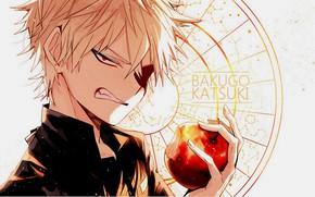 Wallpaper look, Apple, anime, art, guy, Boku no Hero Academy, Bakusou Katsuki, My heroic academia