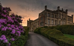Picture flowers, castle, England, alley, Derbyshire, Elvaston