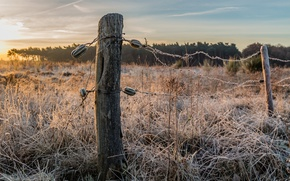 Picture winter, frost, sunset, the fence