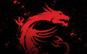 Picture dragon, MSI, micro star international