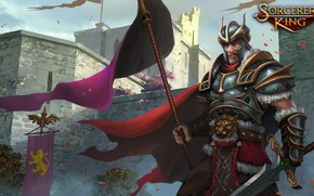 Picture wall, sword, flag, warrior, Sorcerer King