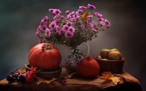 Picture autumn, leaves, flowers, apples, October, pumpkin, still life, chrysanthemum