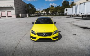 Picture Mercedes, Front, AMG, Yellow, C63, Face, Poisonous