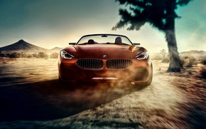 Picture Concept, BMW, BMW, convertible