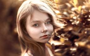 Picture hair, Stepan Gladkov, the beauty, Stepan Gladkov, curls, portrait
