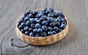 Picture berries, blueberries, fresh, blueberry, blueberries, berries