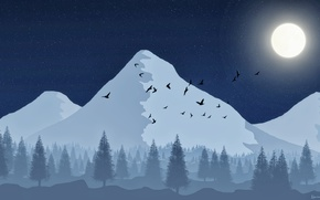 Picture forest, the sky, stars, mountains, birds, the moon, tree, moon, forest, picture, sky, stars, picture, …