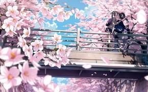 Picture flowers, anime, art, girl, guy, kantoku