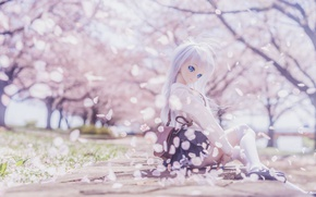 Picture mood, toy, doll, petals