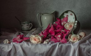 Picture style, roses, mug, shell, pitcher, still life, orchids, buds