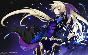 Picture anime, feathers, art, guy, Tales Of Zestiria