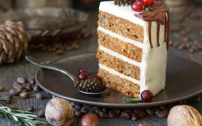 Picture cake, nuts, bump, layers, cream, piece, jam