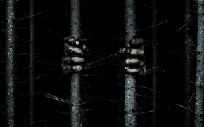 Picture cinema, trees, movie, fear, evil, witchcraft, hands, prison, film, witch, terror, The Woods, optical illusion, …