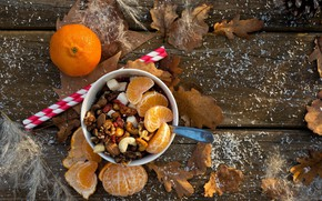 Picture leaves, slice, Cup, nuts, Mandarin