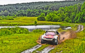 Picture Nature, Grass, Lake, Forest, Sport, Speed, Dirt, Peugeot, Rally, Rally, Overcast, DKR, 2017, 3008, Silk …