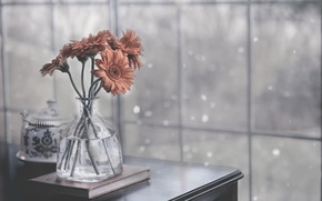 Picture flowers, table, background