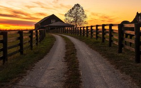 Picture fence, horse, the evening, road