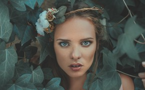 Picture look, leaves, flowers, face, wreath, Marharyta