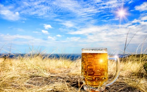 Picture the sky, grass, the sun, clouds, landscape, beer, mug, bokeh