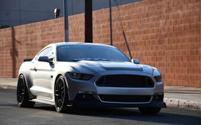Picture car, Mustang, Ford, Ford Mustang, RTR, Ford Mustang RTR