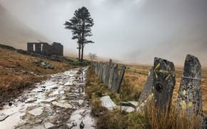 Picture road, fog, the fence, ruins